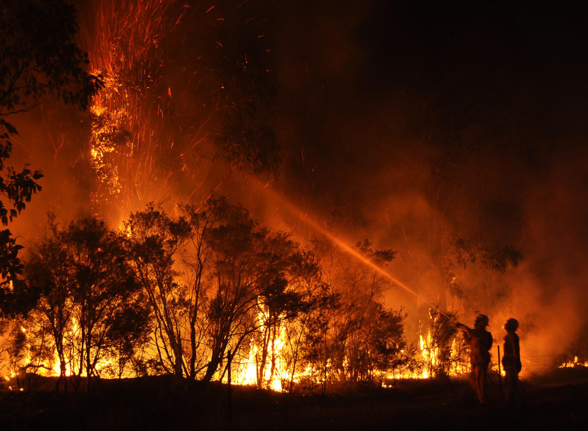 bushfire - photo #11