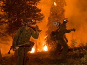 Idaho_Forest_Fire2012